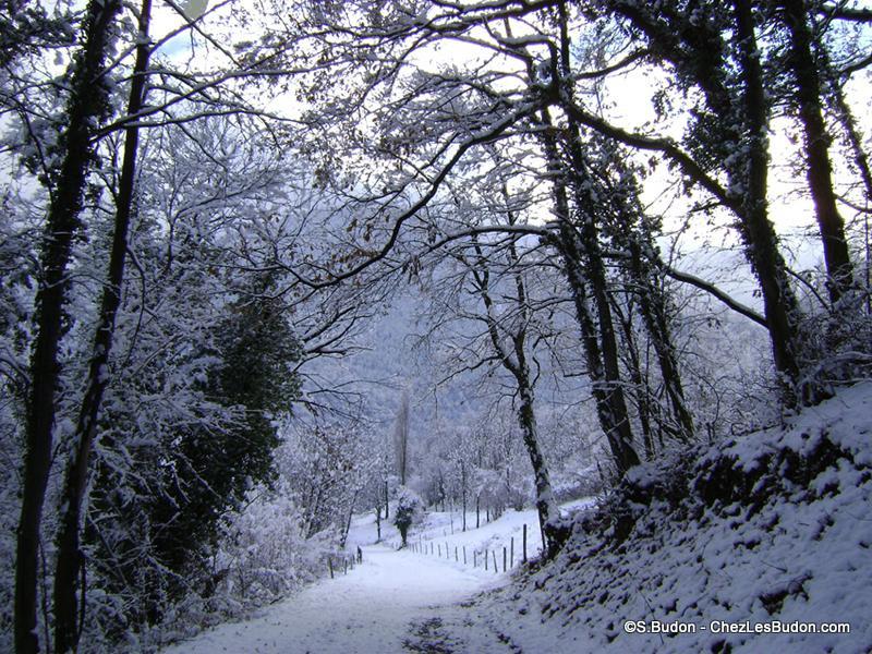 1__hameaux__S. Budon__1208__route des Jarboudières