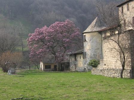 1__village__Commune__0000__Maison Forte de Gruyère