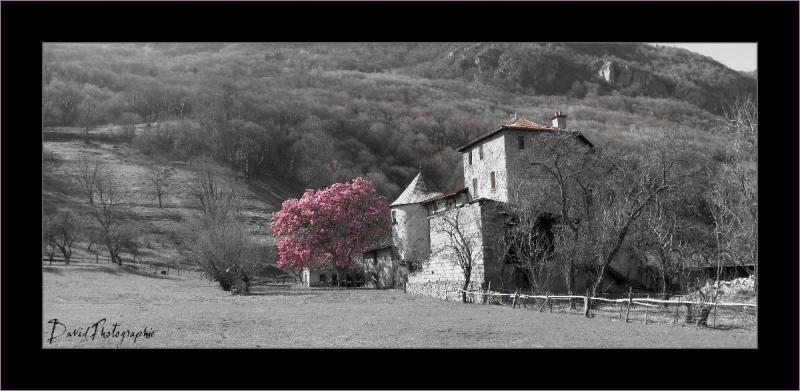 1__village__david__0312__noir et couleurs maison gruyère.magnolia
