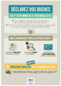 ruche_declaration2016