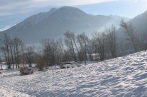 Sous la neige