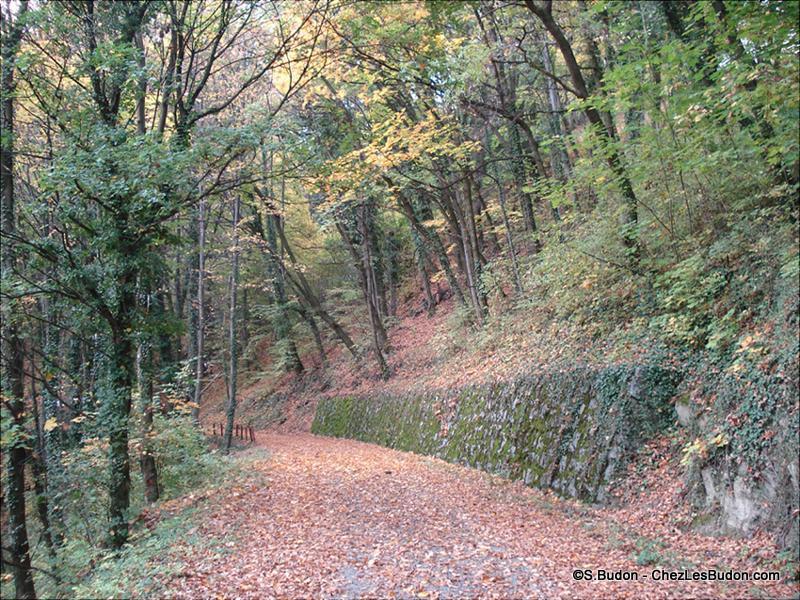 1__hameaux__S. Budon__1008__route des Jarboudières