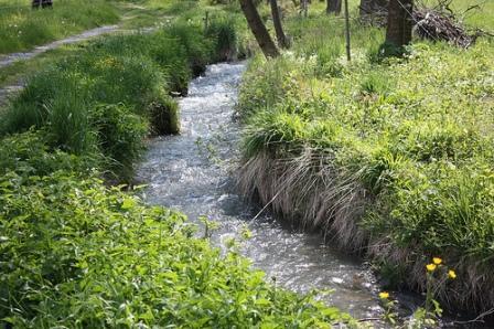 1__village__Commune__0000__Le ruisseau du Bial
