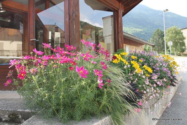1__village__Dom. L__0812__L'école maternelle fleurie
