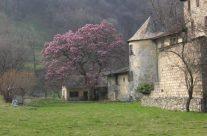 La maison Gruyère